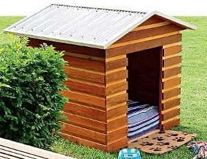 Find This Pin And More On Dog Build A Dog House