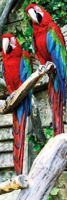 Vertikální puzzle DINO 1000 dílků - Papoušci