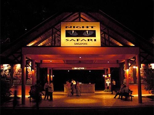 Singapore zoo, night safari.