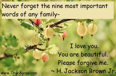 Words of wisdom marriage quotes | I love you | beauty | please forgive me
