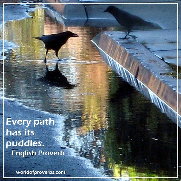 World of Proverbs - Famous Quotes: Every path has its puddle. ~ English Proverb [16437]