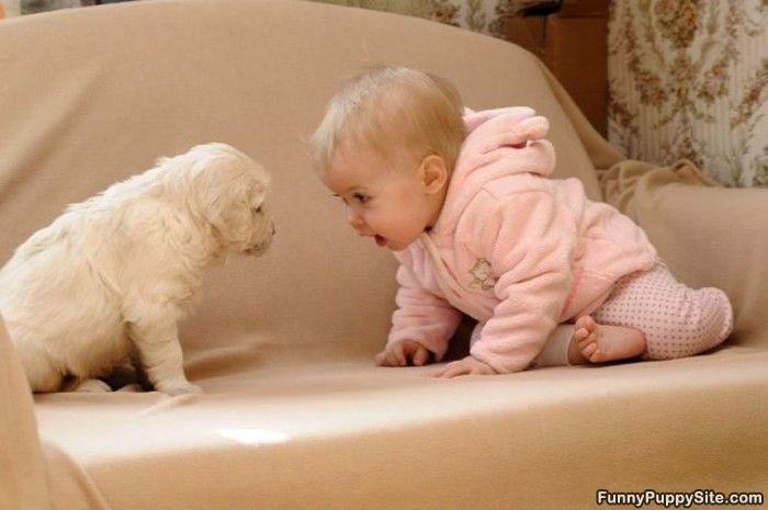 puppy vs. baby showdown! so cute...