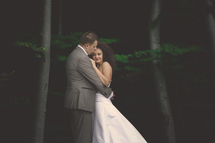Enchanted forest. Sedinta foto dupa nunta cu Iulia si Victor.