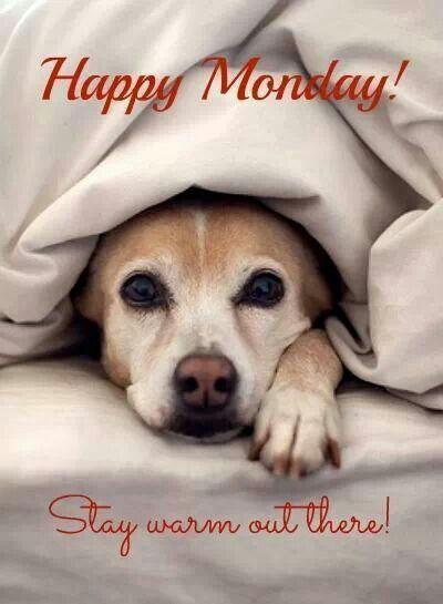 Happy Monday! ❤️                                                                                                                                                                                 More