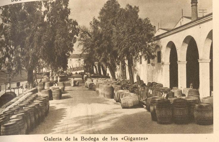 """Galería de la Bodega de los """"Gigantes""""."""