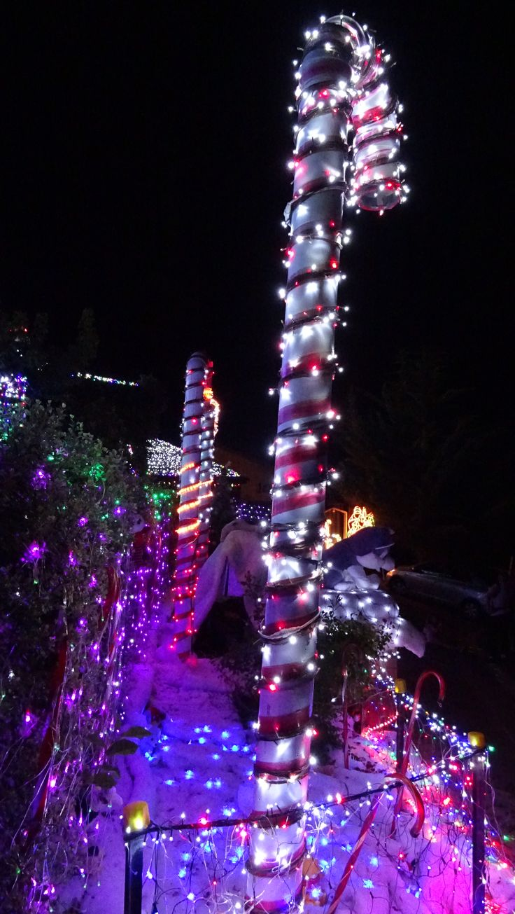 Christmas in Canberra - Australia