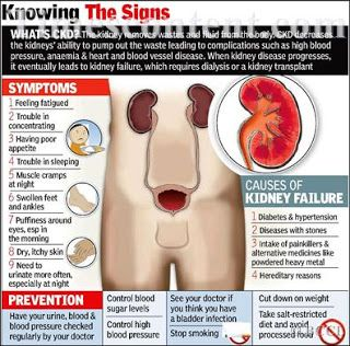 Knowing the Signs of Chronic Kidney Disease