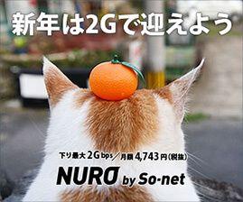 世界最速級インターネット「NURO」のデメリット挙げてくwwww | まとめエクストラファイヤー | NURO 光