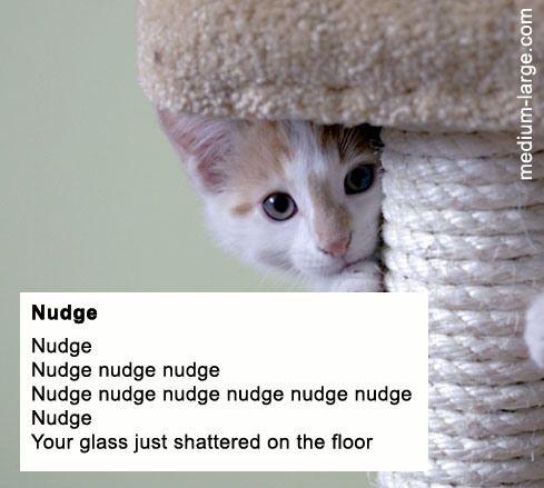Nudge Cat Poem