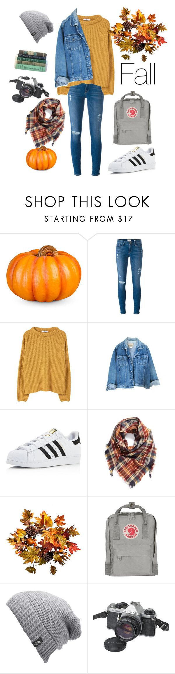 """Fall   #fall"" by magdons on Polyvore featuring Improvements, Frame Denim, MANGO, adidas, BP., The North Face and Pentax"