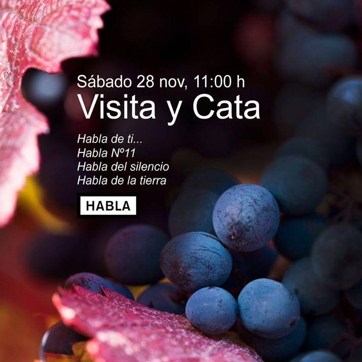 Visita y Cata en Bodegas Habla el sábado 28 de noviembre. Imprescindible reserva en 927659180. Plazas limitadas.