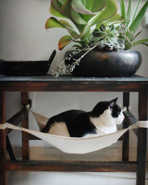 1000 ideias sobre arranhador de gato no pinterest for Mobilia network
