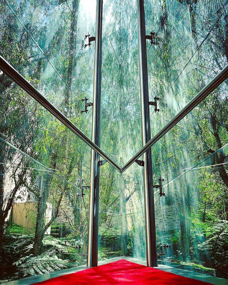 Secret views of Brisbane... . #conservatorium #visitsouthbank #lumixlife #vision #discoverbrisbane