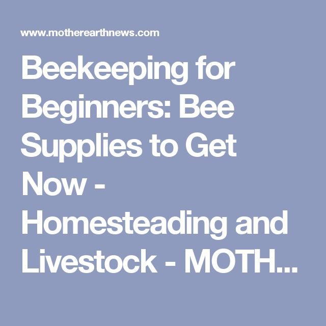 Beekeeping for Beginners: Bee Supplies to Get Now - Homesteading and Livestock - MOTHER EARTH NEWS