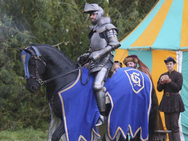 ABC makes a gallant effort with silly 'Galavant' via @USATODAY