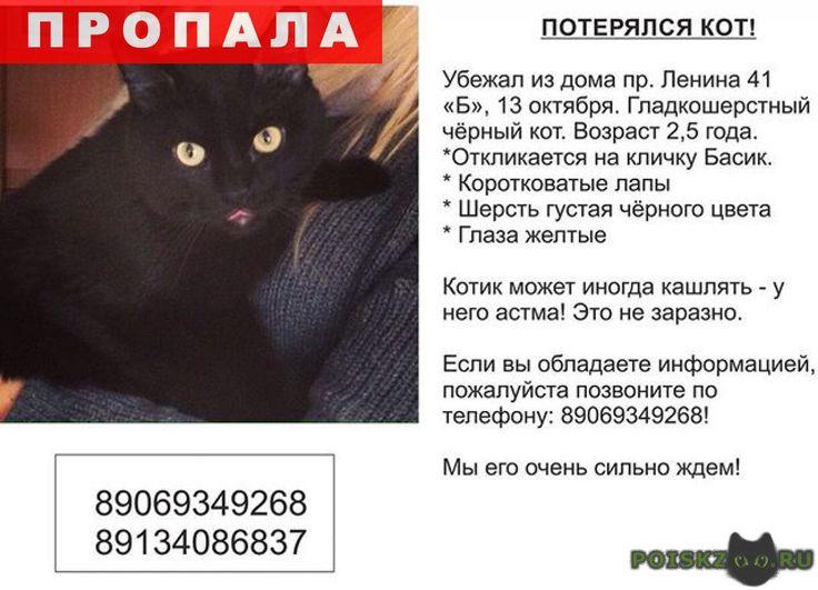 Пропал кот черный г.Кемерово http://poiskzoo.ru/board/read32136.html  POISKZOO.RU/32136 Убежал .. из дома по адресу: пр. Ленина ..б. Черный кот практически без белых пятен, с густой шерстью. Лапы немного короткие. Возраст .., .. года.   РЕПОСТ! @POISKZOO2 #POISKZOO.RU #Пропала #кошка #Пропала_кошка #ПропалаКошка #Кемерово