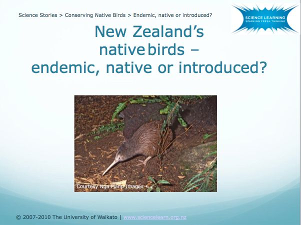 DOWNLOADABLE POWERPOINT - Endemic, native or introduced? Birds are categorised as endemic, native or introduced. This PowerPoint presentation gives examples of some of the different types of birds we have in New Zealand.