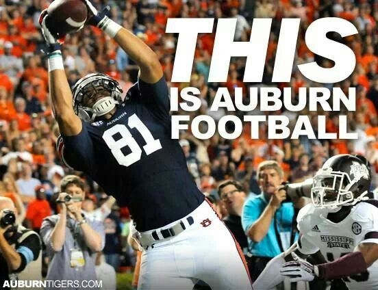 Most amazing turn-around season in Auburn Football history. Look at this cool blog, RollTideWarEagle.com for Sports stories that inform and entertain plus FREE football rules tutorial, check it out.