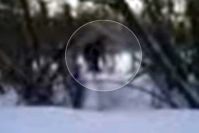 Yeti sightings in Himalayas- The Unsolved Mystery of India