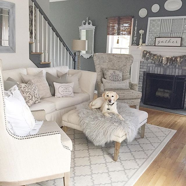 My Piper is growing like crazy and she can't decide if she's ready for a nap or play.  I'm secretly hoping for the nap😬!! Have you shared for #dogsindecor?  Also, reminding you to enter the $300 Pottery Barn gift card giveaway. See details a few posts back!! Sharing for some fun Friday tags.  #myfabfindfriday #fancyfarmhousefriday #fromrust2roses