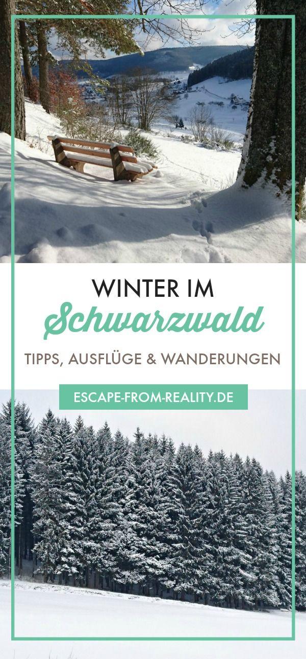 Winter im Schwarzwald: Tipps, Ausflüge & Wanderungen