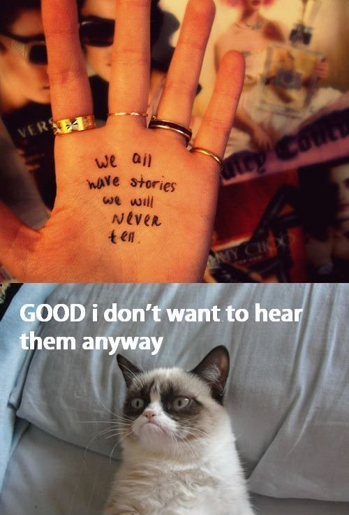 114 Best Grumpy Cat. Images On Pinterest | Funny Things ...
