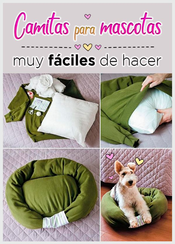 Con estas ideas tus mascotas dormirán como reyes Reyes, Bud, House, Pet Beds, Dog Beds, Sky, Creativity, Gatos, Dressmaking