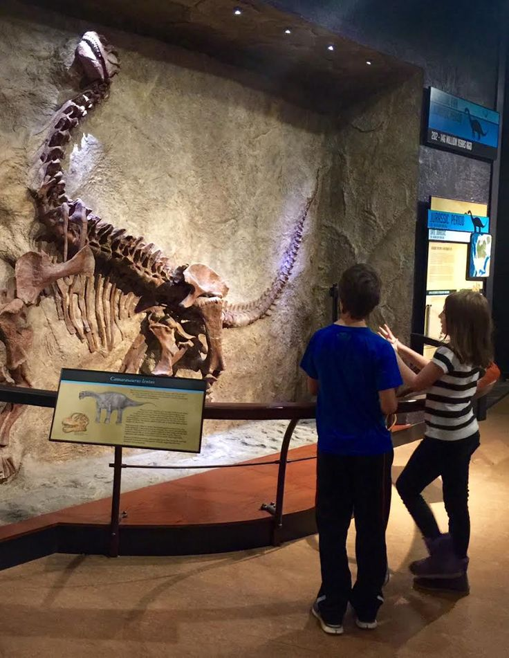 Kid Friendly Things to Do in Harrisburg, PA