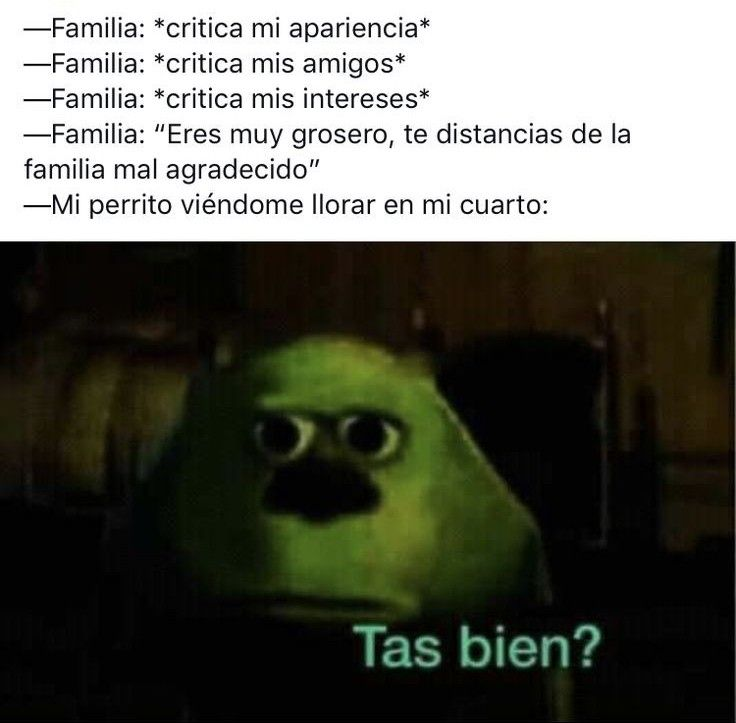 Pin By Sol On Memes Divertidos Grinch