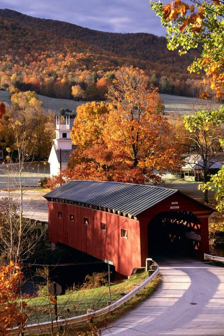 Country Road and old covered bridge in Autumn.