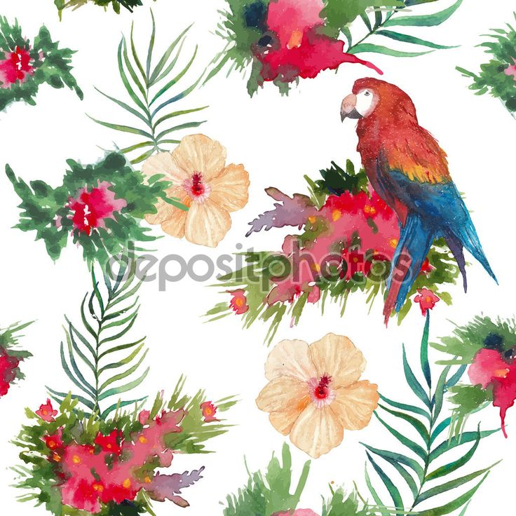 Акварель тропические цветы и птицы шаблон - Векторная картинка: 73028615
