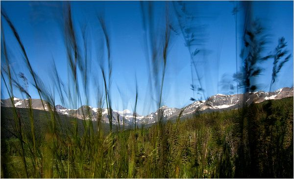 Glacier National Park: A century and a half ago there were 150 glaciers in what is now Glacier National Park. Twenty-five remain. via Stephen P. Nash, NYTimes. Photo by Djamila Grossman, NYTimes. #Glacier_National_Park #Montana #NYTiimes #Djamila_Grossman #Stephen_P_Nash