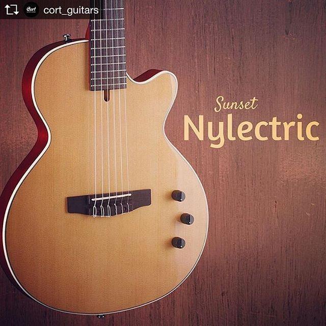 Pin On Nylon Strings Electric