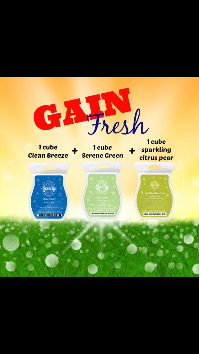 Love the scent of Gain? Fill your whole house with this yummy scent. www.bobbiecasler.scentsy.us
