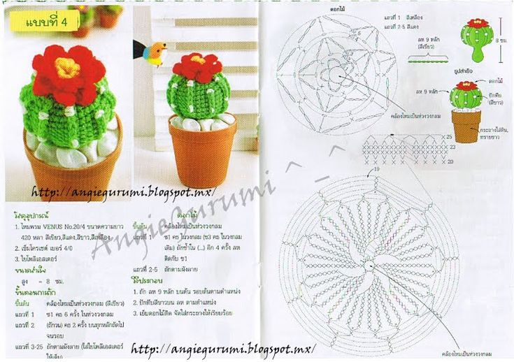 Amigurumi Cactus (3 different kinds of Cacti) - free crochet pattern and chart