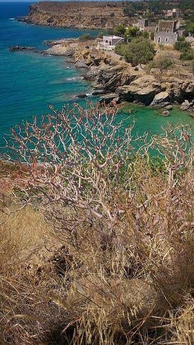 Panoramio - Photos by baryann