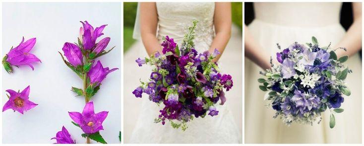 buchete de mireasa cu campanule mov - flori in culoarea anului 2018: ultraviolet