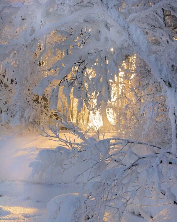 Finland -32 degree celsius by Kari Liimatainen‎ Photography