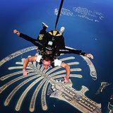 Skydive [ ]