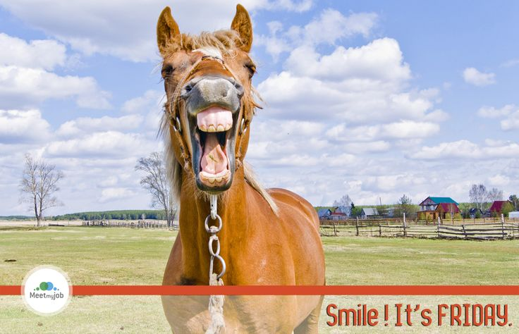 Smile, it' #friday !