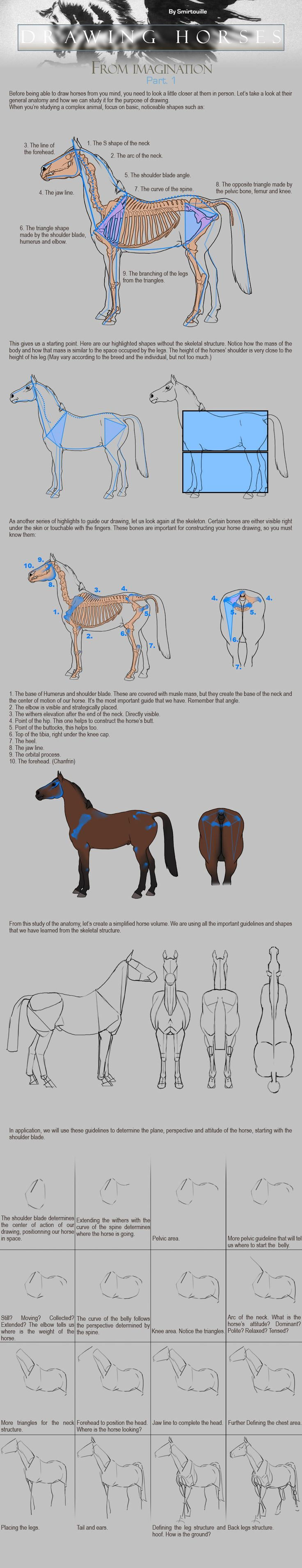 101 best Horses-Anatomy-Sculpture images on Pinterest | Equine art ...