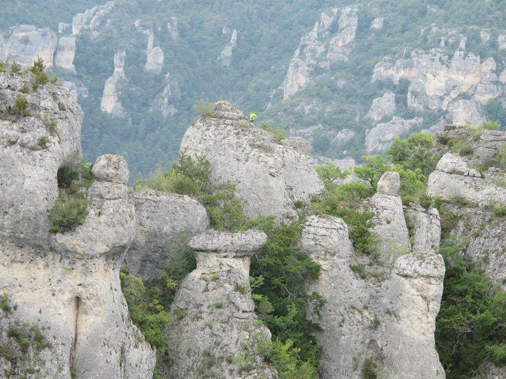 A l'assaut du rocher de Cinglegros, un  éperon rocheux proposant une vue panoramique du canyon du #Tarn. #unesco #caausses #cevennes