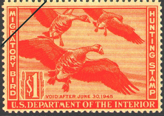 1944 Federal Duck Stamp by Walter A. Weber.     Black and white wash painting of White-fronted Geese by Walter A. Weber, an artist who was a staff illustrator for the National Park Service, and well known for his work with the National Geographic Society. (Deceased)