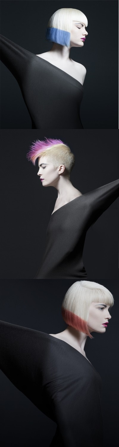 Kerissa Sample /NAHA 2013 Finalists - Student Hairstylist of the Year