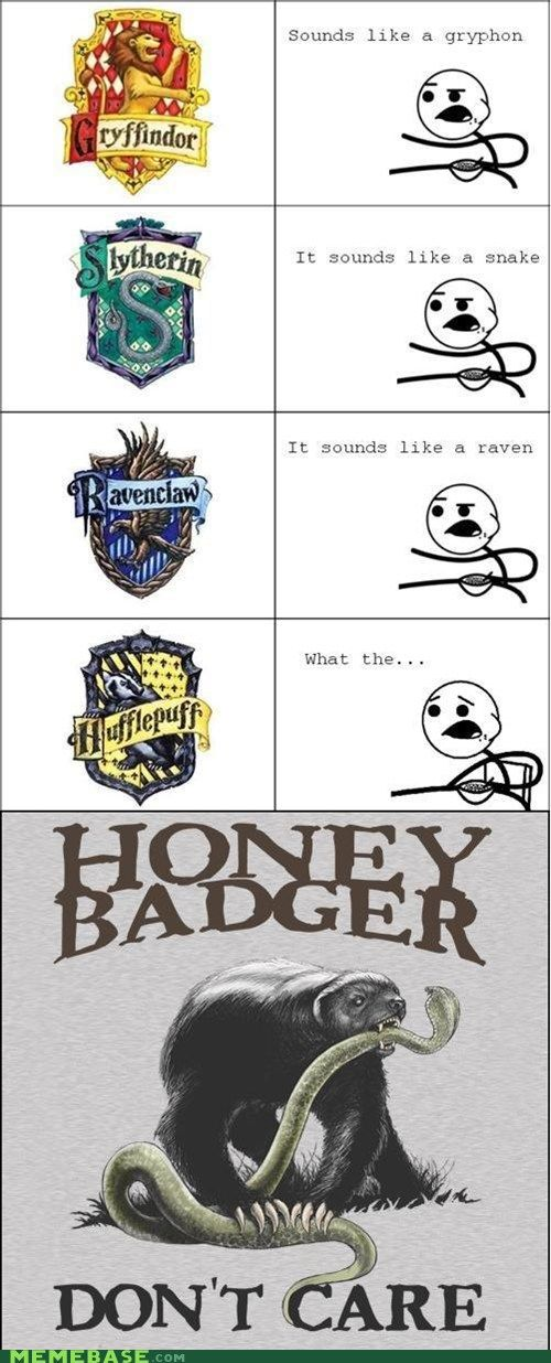 Honey Badger Don't Care!  This is what happens when the dependable Hufflepuffs lose their temper.