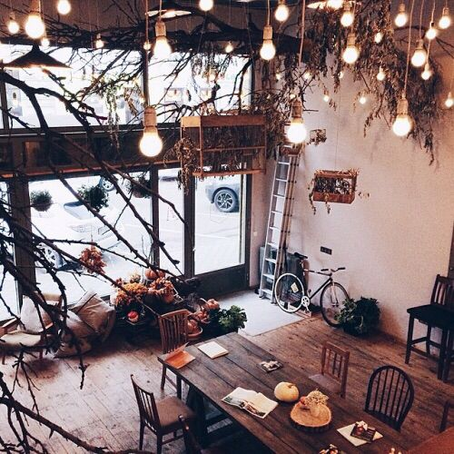 Cozy coffee shops
