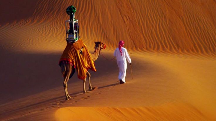 street view camel - Google Search