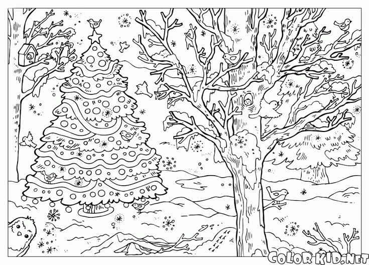 1402 best Christmas coloring images on Pinterest | Coloring books ...
