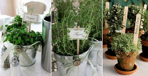 Potted Herbs well depending on the venue...like a barn wedding or for those that want a Eco friendly wedding