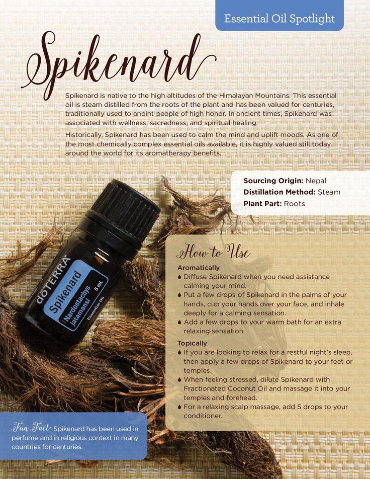 Spikenard Essential Oil Spotlight doTERRA Living Magazine Winter 2016 #doterra #spikenard #essential #oil